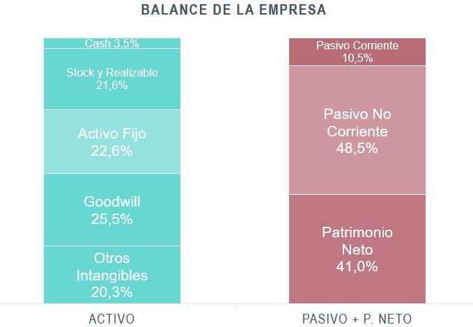 Balance de la empresa SWM 2020